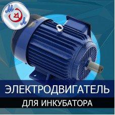 Электродвигатель инкубатора