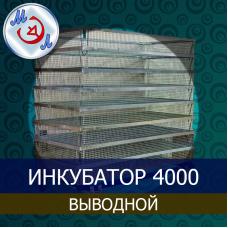 Инкубатор выводной на 4000 яиц