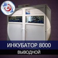Инкубатор 8000 профессиональный выводной