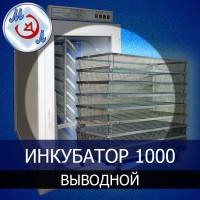 Инкубатор выводной на 1000 яиц