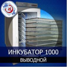 Инкубатор 1000 яиц выводной
