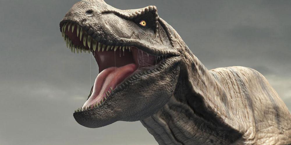 Куры - родственники динозавров